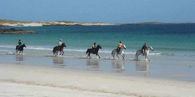 The Point Pony Trekking & Horse Riding Centre